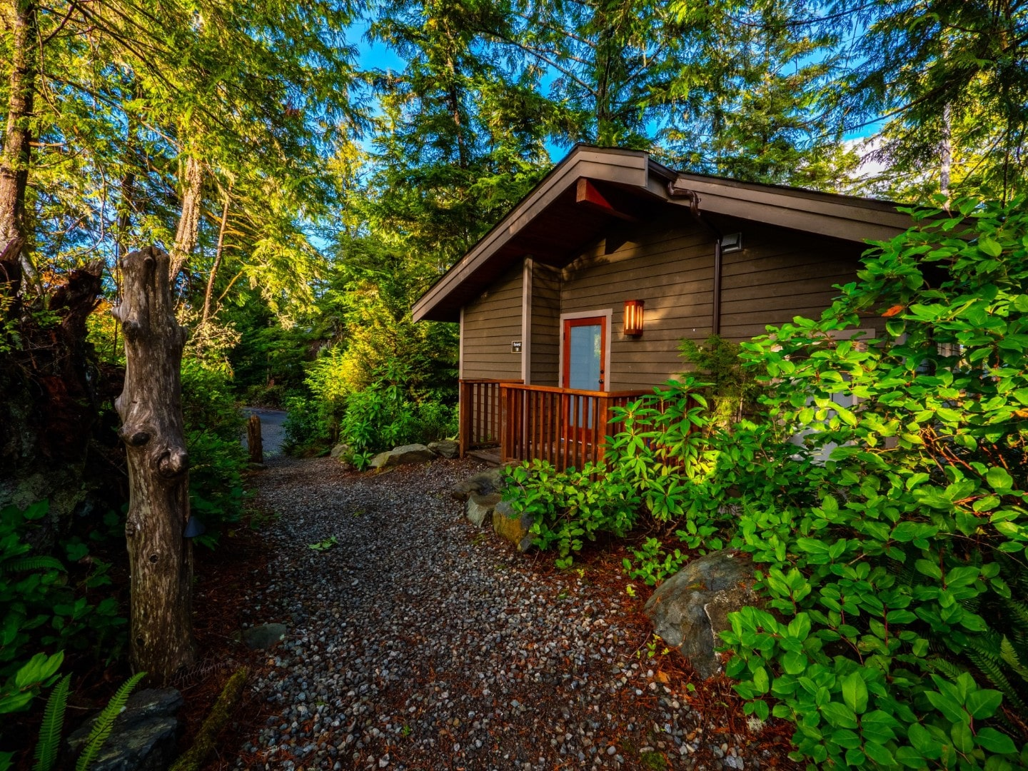 Upper Canopy - Rainforest Ucluelet Accommodation